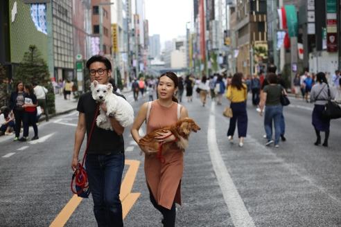 Quartier Ginza