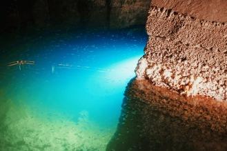 Lac salin des Mines de sel de Wieliczka