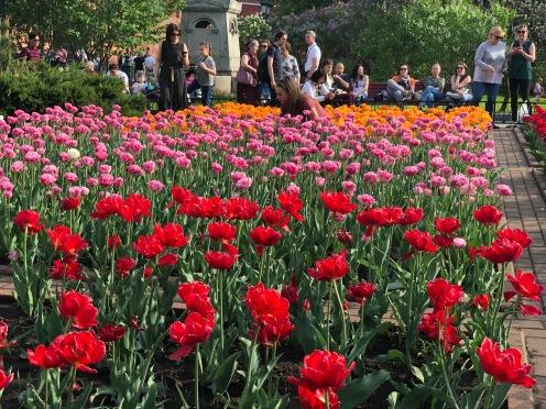 Jardins d'Alexandre du Kremlin Moscou