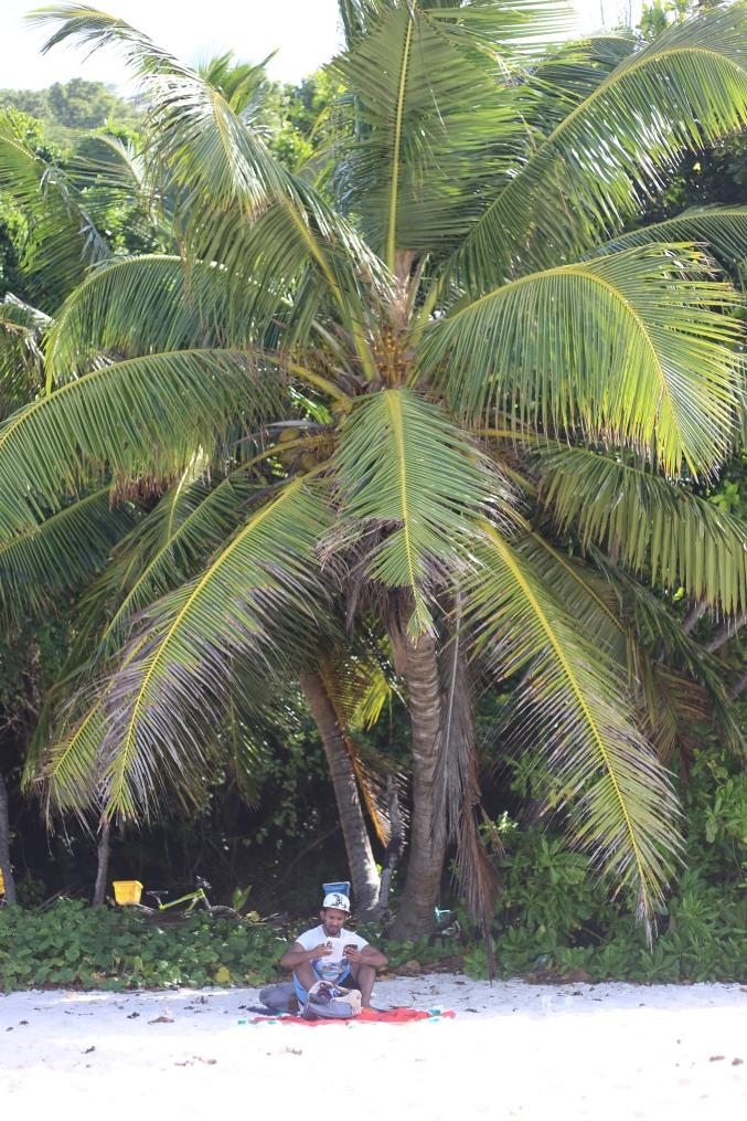 Anse Fourmis - La Digue (Seychelles)