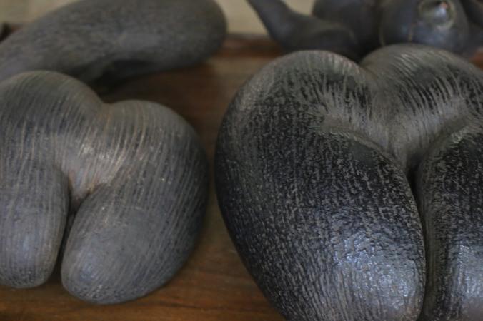 Coco de mer (ou coco-fesse) de la vallée de Mai - Praslin